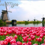 windmill and tulip day trip amsterdam 0 150x150 Windmill and Tulip Day Trip Amsterdam