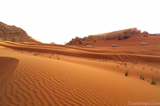 a6 Desert Safari in Dubai Must Do Tour!