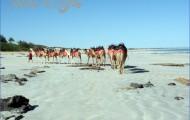 Best Destinations in Australia_0.jpg