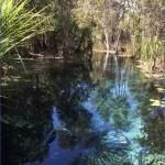 fixedw large 4x1 150x150 Map of Mataranka Australia Tourism