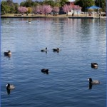 5 best places to visit in city of lake balboa 9 150x150 5 Best Places To Visit In City Of Lake Balboa