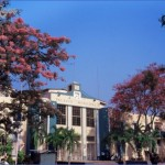 5 best places to visit in city of san pedro sula 0 150x150 5 Best Places to Visit in City of San Pedro Sula