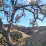 anza loop trail calabasas 6 150x150 Anza Loop Trail Calabasas