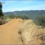 parker mesa overlook via east topanga fire road 7 150x150 Parker Mesa Overlook via East Topanga Fire Road