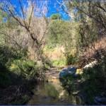 santa ynez waterfall trail trails los angeles county 7 150x150 Santa Ynez Waterfall Trail   Trails   Los Angeles County