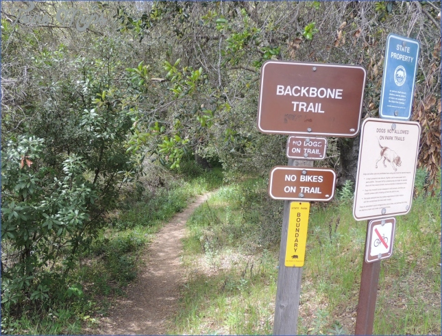 1000 Hikes in 1000 Days: Day 873: Backbone Trail from Old Topanga ...
