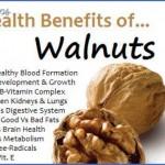 the health benefits of walnuts 3 150x150 The Health Benefits Of Walnuts