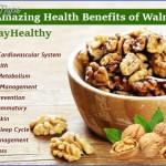 the health benefits of walnuts 4 150x150 The Health Benefits Of Walnuts