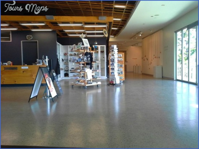 Entry foyer and gift shop at the gallery - Picture of Tweed Regional ...