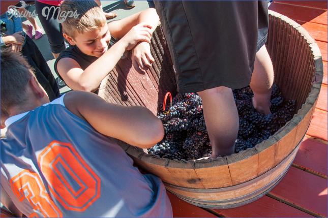 carlton crush harvest festival top usa festivals 6 Carlton Crush Harvest Festival   Top USA Festivals
