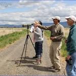 ladd marsh bird festival la grande usa festivals 4 150x150 Ladd Marsh Bird Festival La Grande   USA Festivals