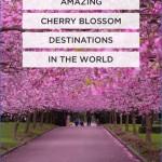 northwest cherry festival usa festivals 0 150x150 Northwest Cherry Festival   USA Festivals