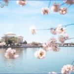 northwest cherry festival usa festivals 2 150x150 Northwest Cherry Festival   USA Festivals