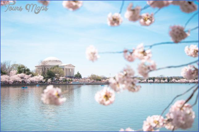 northwest cherry festival usa festivals 2 Northwest Cherry Festival   USA Festivals