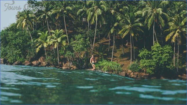 the surf retreat where sri lanka  6 The Surf Retreat Where? Sri Lanka