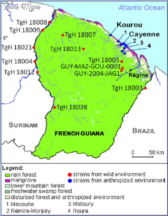 Where is Cayenne, French Guiana? - Cayenne, French Guiana Map