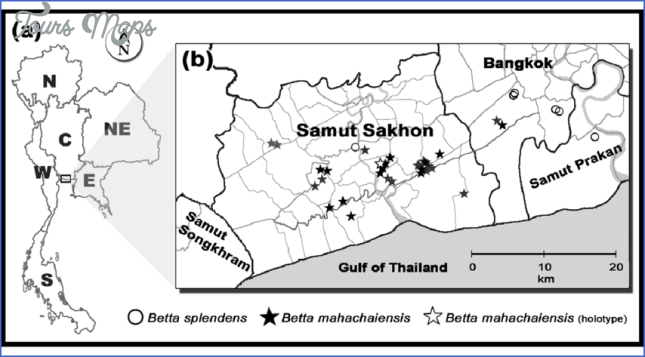 Map of Thailand showing Betta mahachaiensis catch sites