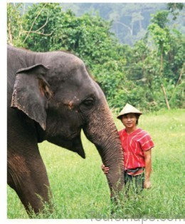 delivering so much more than ly and lop beaches thailand ticks all the boxes for romance culture and adventure brides uncovers this diverse destination 1 Delivering so Much More Than ly and  lop Beaches Thailand Ticks all The Boxes for Romance Culture And Adventure Brides Uncovers This Diverse Destination