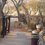 %name Sanctuary Makanyane Safari Lodge SOUTH AFRICA